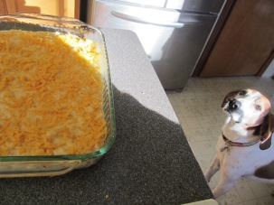 Mac and cheese in casserole dish, with remaining cheese sprinkled over the top.
