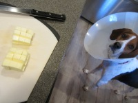 Cold butter, cut into cubes. Plus, a dog lamp.