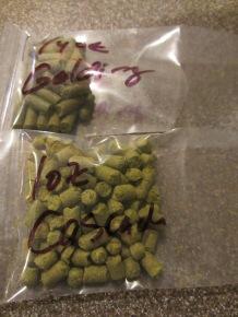 Kent Goldings and Cascade hops.