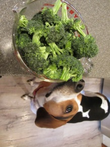 Broccoli florets.