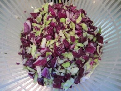 Cabbage, rinsed and ready to spin in the salad spinner.
