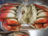 Whole Dungeness crab, apron and gills removed.