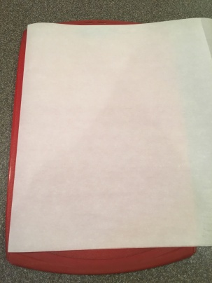 Sheet of parchment, folded in half.