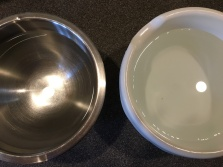 Bleach water on the left and clean water on the right.