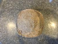 Cumin seed and cardamom.