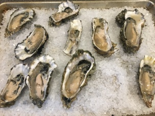 Shucked oysters on rock salt.