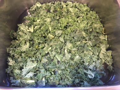 Trimmed kale in a sink of cold water.